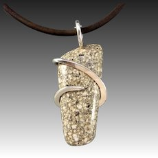 Wild Horse Sterling Silver Wrapped Pendant Necklace
