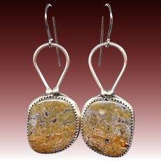 Ocean Jasper Sterling Silver Earrings