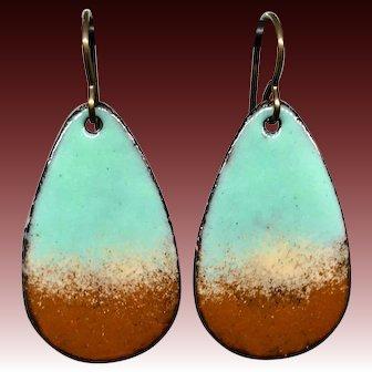 Blue And Brown Enamel Earrings
