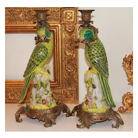Pair of Porcelain Parrot Candlesticks