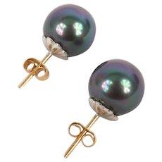 Grey cultured pearl earrings