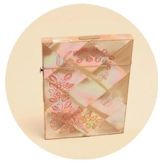 Antique Card Case Carte de Visite Mother of Pearl Etched Carved Pink Butterfly Dragon Fly Business Cards S817