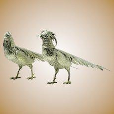 Spanish silver pheasants by Dionisio Garcia Gomez