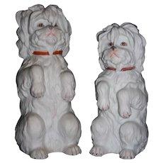 Gebruder Heubach Pair of Maltese Dogs