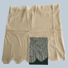 """Vintage 15"""" Tall Silky Netted Lacy Panel"""