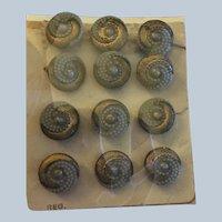 12 Vintage Czech  Small Glass  Buttons