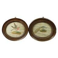 Antique Pair Miniature Silkwork Bird Embroideries Georgian Circa 1780