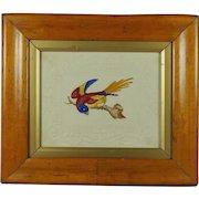 Antique Watercolor Bird Embossed Dobbs Paper Georgian Circa 1820 Birds Eye Maple Frame