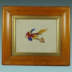 Antique Watercolor Bird Embossed Dobbs Paper Georgian Circa 1820 Birds Eye Maple Frame