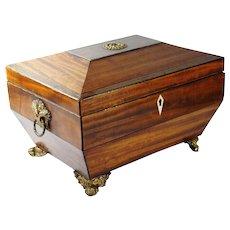 Antique Georgian Mahogany Box 19th Century Sarcophagus Shape English Circa 1810