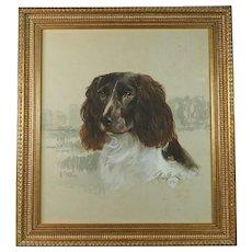 Reuben Ward Binks Dog Portrait Springer Spaniel  Signed Dated 1922