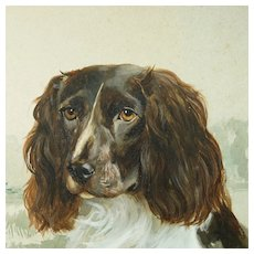 1920s Dog Portrait Watercolor Painting Springer Spaniel By Reuben Ward Binks 1922