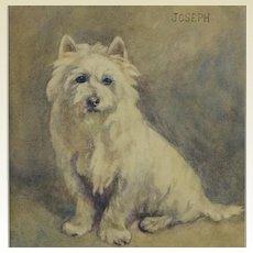 Antique Dog Watercolor Portrait West Highland Terrier named Joseph,  Signed Dated 1916