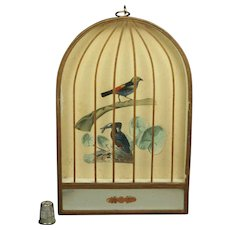 Antique 19th Century French Trompe L'oeil  Bird Cage Mirror Picture Kingfisher Decoupage Circa 1860
