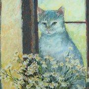 20th Century White Cat Pastel Portrait British Artist Shelagh Popham 1988