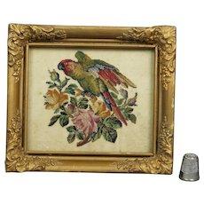 Antique 19th Century Miniature Needlepoint Needlework Lory Parrot Flowers Circa 1840