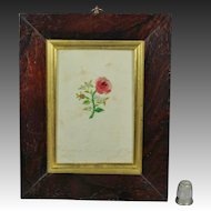 Antique French Miniature Embroidery On Paper Rose Flower Georgian Circa 1820