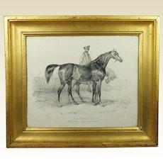 Antique 19th Century Racehorse Print 'Shakespeare' Superb Gilt Frame French Lithograph Circa 1840 Horse Racing