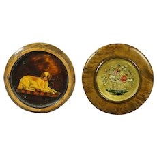 Antique Regency French Snuff Box Dog Portrait Floral Gilt Panel Burr Mulberry Circa 1800
