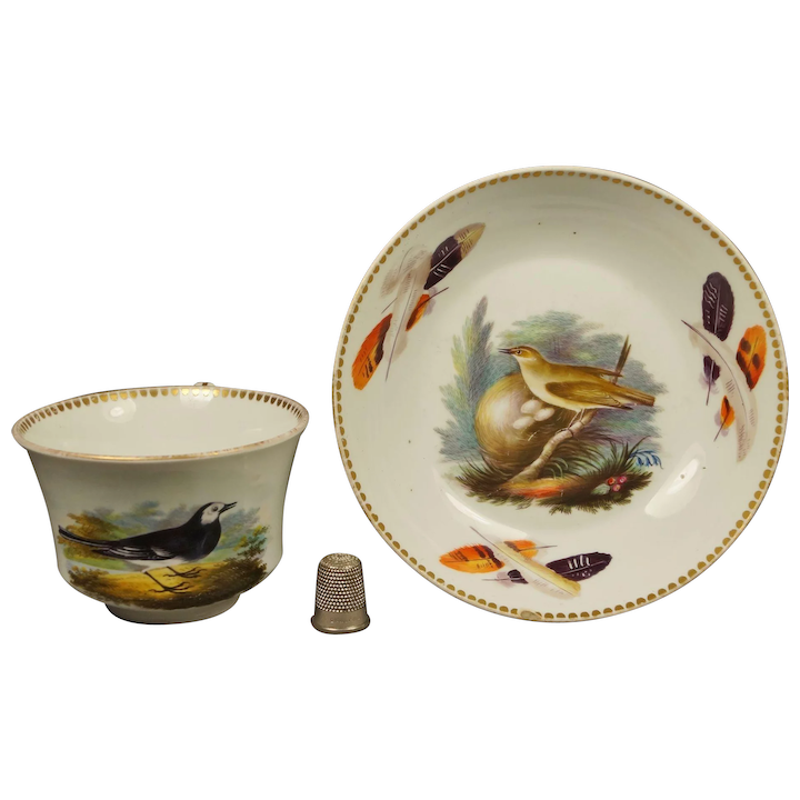 Rare Regency Wedgwood Porcelain Cup And Saucer Aaron Steele Hand Painted Birds Feathers Ornithology Circa 1815 Af