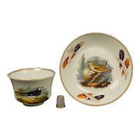 Rare Regency Wedgwood Porcelain Cup And Saucer, Aaron Steele Hand Painted Birds and Feathers, Ornithology Circa 1815 AF