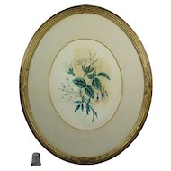 19th Century Theorem Painting on Paper Rose Oval Gilt Frame Circa 1860 AF