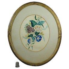 19th Century Theorem Painting on Paper Morning Glory Flower Oval Gilt Frame Circa 1860 Folk Art