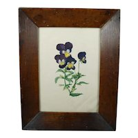 English 19th Century Floral Watercolor Painting Pansy Viola Flowers Circa 1825 Folk Art Frame