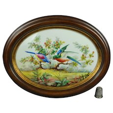 Gorgeous English Bird Painting On Porcelain Signed T Lunt 1923, Oval Frame