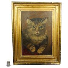 19th Century Cat Kitten Oil Painting On Board Gilt Frame Victorian Circa 1890
