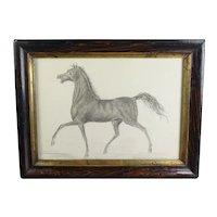 Antique 19th Century Miniature Horse Graphite Pencil Drawing, Equestrian Portrait Circa 1870