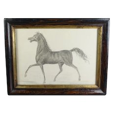 Antique 19th Century Miniature Horse Graphite Pencil Drawing, Equestrian Portrait Circa 1870