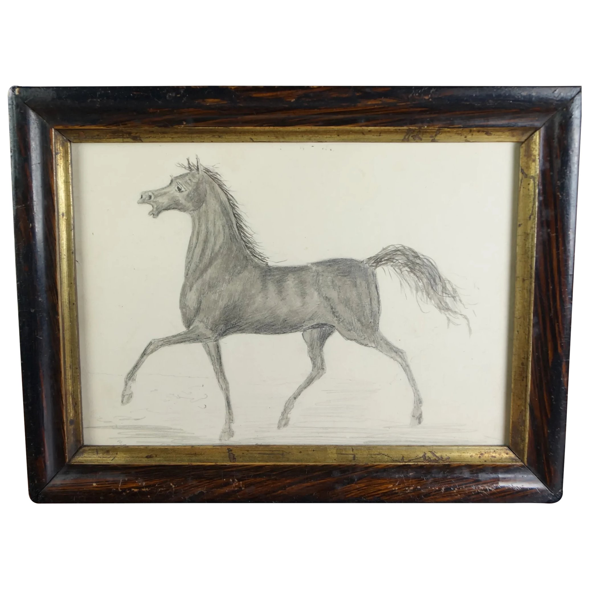 Antique 19th Century Miniature Horse Graphite Pencil Drawing Trinity Antiques Ruby Lane