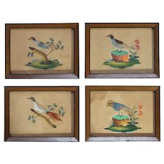 Antique French 19th Century Set Of Four Bird Feather Pictures and Watercolor Painting Circa 1875