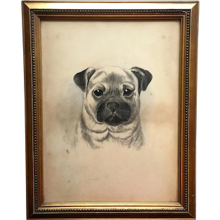19th Century Pug Dog Portrait, Monochrome Watercolor Signed and Dated 1897