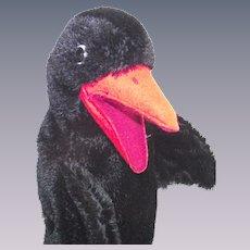 Vintage Steiff Hucky Raven Bird Hand Puppet  Circa 1964 - 1969