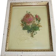Victorian Painting of Moss Roses Celluloid