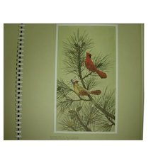 "Prints of Birds and Animals Complete Folio by James Lockhart ""Portraits of Nature"" 24 Prints"