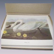 50 Piece Audubon-Birds-of-America Portfolio in Original Box