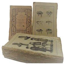 Godeys 1857 unbound - Boston Spectator and Ladies Album 1826 - The Peoples Magazine 1842