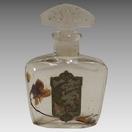 Vintage  Violet Perfume Bottle with Lovely Art Nouveau Label from Apothecary