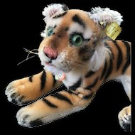 Charming Steiff Tiger with both Tags and Glow-In-The-Dark Glass Eyes - 1950's