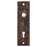 Antique Eastlake Cast Iron Door Plates, c.1890