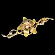 Pin--Early 20th C. Silky Pale Translucent Enamel Flowers On 10 Karat Gold