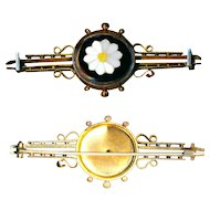 Brooch ~ Mid-19th C. Etruscan Gold-plate Micromosaic Daisy--Odd Shading but Striking