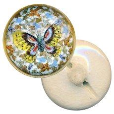 Button--Very Fine Late 19th C. Satsuma--Thousand Butterflies--Medium