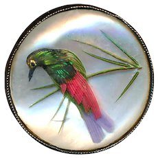 Button--Late Georgian Habitat Under Glass in Silver Feathered Bird with Grass