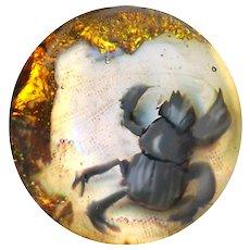 Button--Modern Artist Glass Paperweight Creepy Goliath Beetle