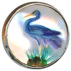 Button--Scarce Mid-19th C. Habitat Specimen Under Glass--Blue Heron