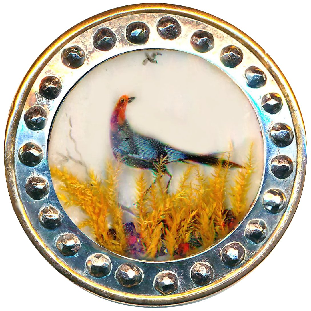 Button Large Late Georgian 18th C Habitat Of Pheasant Under Glass In R C Larner Ruby Lane Information and translations of pheasant under glass in the most comprehensive dictionary definitions resource on the web. ruby lane